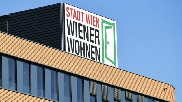 Mit der Beseitigung von Wasser und Fäkalien nach einem Unwetter hatte es Wiener Wohnen vorerst nicht eilig. (Bild: APA/ROBERT JAEGER)