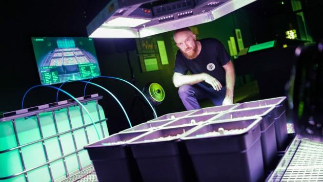 Nicolas Maigred mit seinem Weizenprojekt (Bild: Markus Wenzel)
