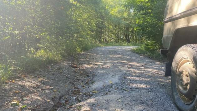 Die Forstwege im Bereich Riederberg und Troppberg sind in schlechtem Zustand. (Bild: Josef Poyer)