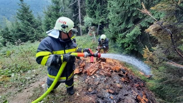 Waldbrand in Wörschachwald, (Bild: Feuerwehren)