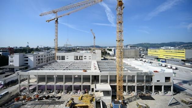Beim Bau der Tiefkühl- und Pharmahalle (oben) und dem Aussichtsturm ist man voll auf Kurs (Bild: Alexander Schwarzl)