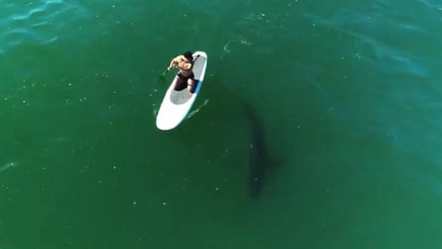 Orlando Bloom hatte vor der Küste Miamis eine Begegnung mit einem Weißen Hai. (Bild: instagram.com/orlandobloom)