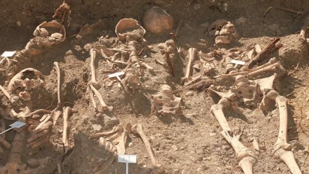 Rund 80 Skelette wurden in Sankt Margarethen entdeckt. Nun konnten die Archäologen auch Schmuck der Verstorbenen aus dem 12. Jahrhundert sicherstellen. (Bild: Christoph Miehl)