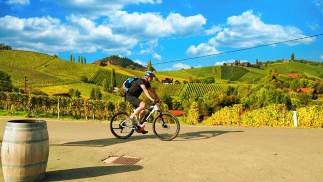 Herrlich: Mit dem E-Bike die Landschaft erkunden. Fit sein sollte man trotzdem! (Bild: Sepp PailSepp Pail)