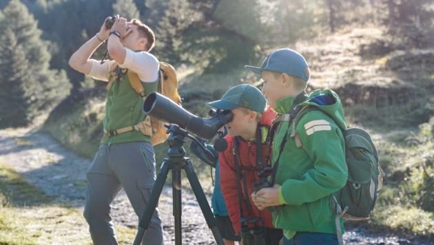 Viel zu entdecken gibt es bei der kostenlosen Wanderung auf den Straßkopf auf knapp 2400 Meter. (Bild: NPHT/Mathäus Gartner)