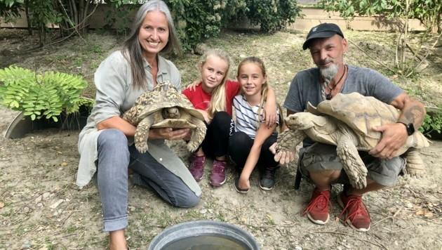 Die Schwestern Lottie und Maia besuchten mit Andrea Specht, Präsidentin des NÖ Tierschutzverbands, Markus Putzgruber und seine Schildkröten. (Bild: zVg)