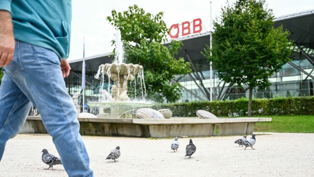 Beim Linzer Bahnhof gibt es viele Tauben. Zum Glück sind ihnen die meisten Leute gut gesinnt. (Bild: Alexander Schwarzl)