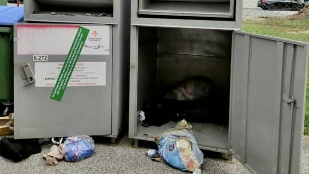 Beim Entleeren der Container machten die Mitarbeiter den grausigen Fund. (Bild: Christian Schulter)