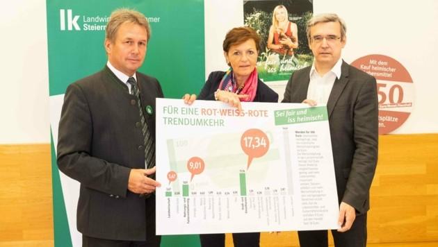 Landwirtschaftskammer-Präsident Franz Titschenbacher, Vizepräsidentin Maria Pein, Wifo-Agrarexperte Franz Sinabell (Bild: Alexander Danner)