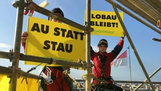 (Bild: Greenpeace)
