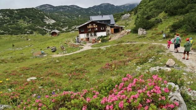 Die Gjaidalm ist sowohl im Herbst als auch im Winter eine beliebte Einkehrmöglichkeit (Bild: Hörmandinger Reinhard)