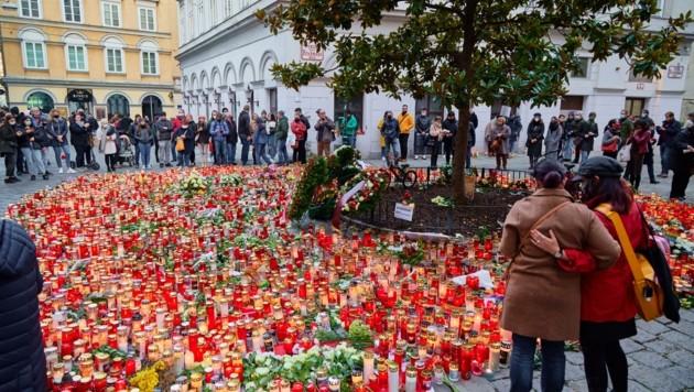 Lange erinnerte ein berührendes Kerzenmeer an den Terroranschlag in der Wiener Innenstadt. (Bild: Starpix/ Alexander TUMA)