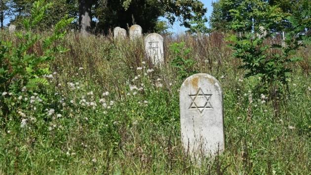 Grabsteine auf dem jüdischen Friedhof in Güssing (Bild: Huber Patrick)