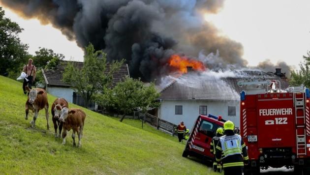 Die Feuerwehr rückte 2020 zu 3215 Bränden aus. Die Zahl der Fehlalarme ist in etwa gleich. (Bild: Kerschbaummayr Werner)