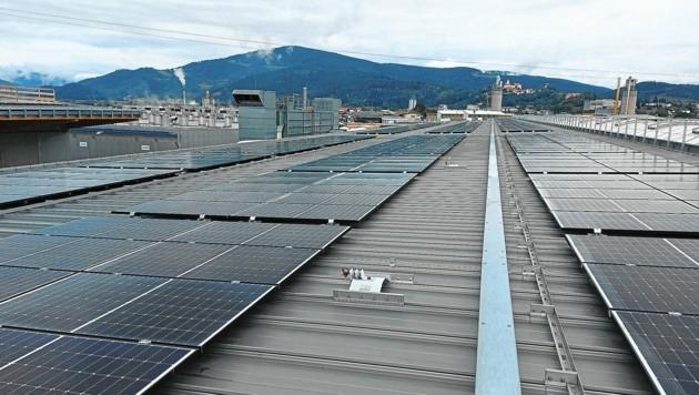 Die Tilly Holzindustrie in Althofen hat gleich drei Produktionshallen mit Fotovoltaik-Modulen ausstatten lassen. (Bild: Andreas Walcher)