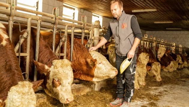 In Sankt Oswald bei Freistadt ist Nebenerwerbslandwirt Michael Spörker (FP) der Gegenkandidat bei der Bürgermeisteramt abhanden gekommen.. (Bild: FRACCAROLI Tino Andrea)