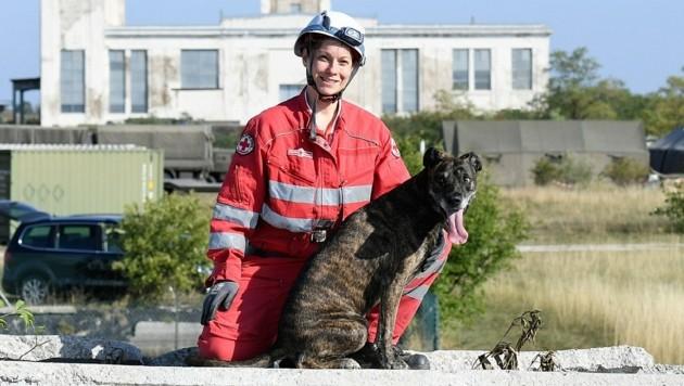 Nach Erdbeben oder Hauseinstürzen sind sie stets zur Stelle: die Suchhunde-Mannschaften des Roten Kreuzes. (Bild: P. Huber)