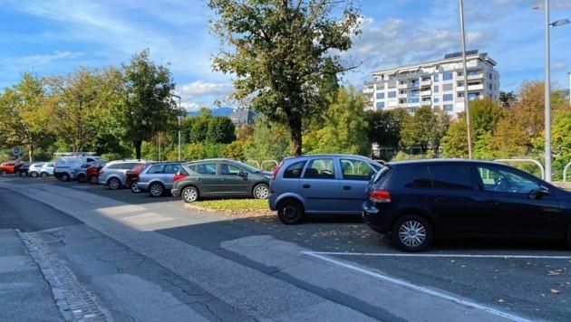 Das Südufer der Drau in Villach ist mit Parkplätzen zugepflastert. (Bild: Peter Kleinrath)