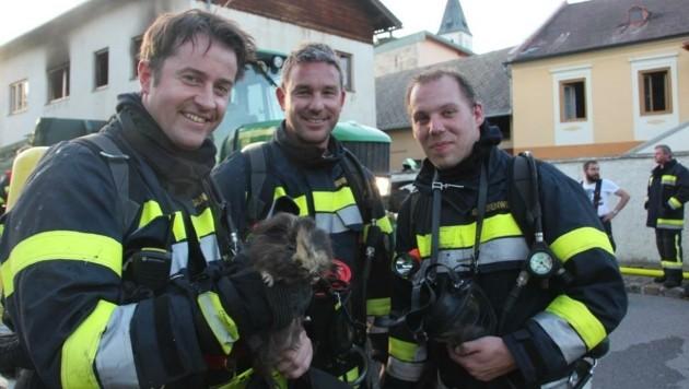 Beim Wohnhausbrand wurden die Einsatzkräfte für ein Meerschweinchen zu Lebensrettern (Bild: Markus Hackl)
