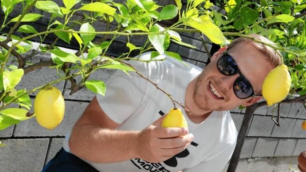 Anfassen verboten! - nicht ohne Grund. Die Früchte fallen leicht herunter. Wie diese Zitrone es leidvoll erfahren musste. (Bild: Rojsek-Wiedergut Uta)