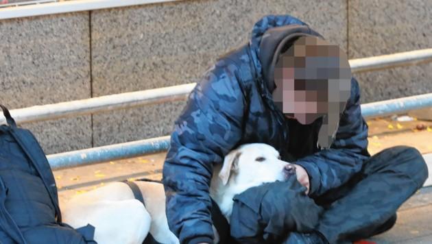 Bettler mit Hund auf der Mariahilfer Straße (Bild: Zwefo, Krone KREATIV)