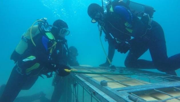 Florianitaucher sind sehr gefragt: Rettungen und Bergungen unter Wasser. (Bild: Feuerwehr)