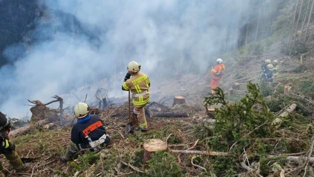 Waldbrand auf 1800 Meter Seehöhe in Moos ob St. Veit im Defereggental (Osttirol), am 10. Oktober gegen 15 Uhr ausgebrochen, Ursache unklar (Bild: zVg/FF St. Veit im Defereggental)
