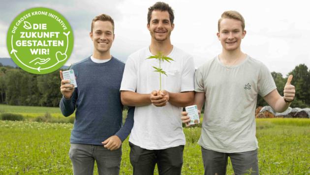 Die Hempions (v.l.): Fabian Braitsch, Daniel Meier, Florian Braitsch und Lukas Bitschnau (nicht im Bild) setzen voll auf Bio-Hanf und hoffen, dass viele weitere Landwirte mitziehen werden. (Bild: Maurice Shourot)