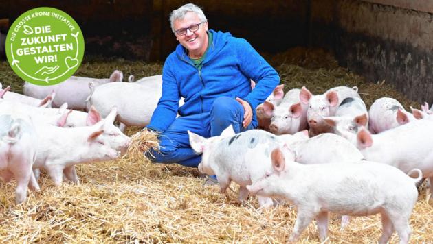 Johannes Tomic hat sich mit der Psyche des Schweines auseinandergesetzt und den Tieren ein Paradies für Mutterschweine und Aufzucht geschaffen. (Bild: Evelyn Hronek Kamerawerk)