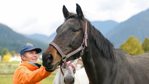 """""""Mädi"""" ist nun mit anderen Pferden in der Obhut von Ingrid Schätzle. (Bild: Österreichischer Tierschutzverein)"""