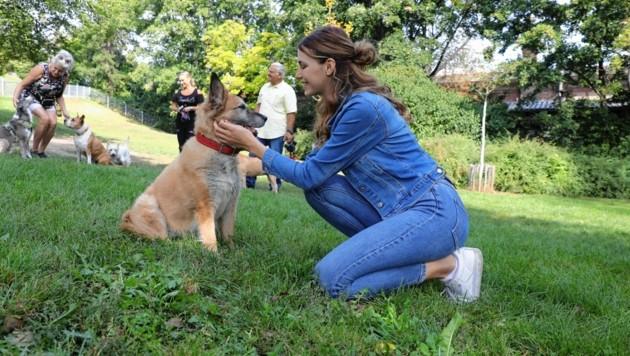 Hundezonen sind Begegnungsorte von Mensch und Tier. (Bild: Jöchl Martin)