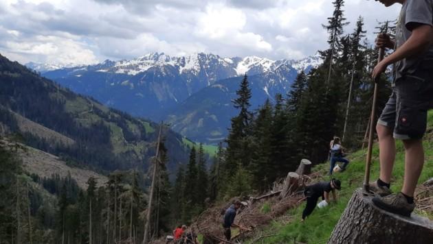 In vielen Osttiroler Gemeinden, wie hier in Obertilliach, arbeiteten die Freiwilligen von Mitte Mai bis Mitte Juni knapp 2000 Stunden. (Bild: Jungbauernschaft/Landjugend Osttirol)
