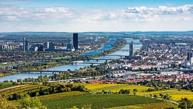 Wohnen ist ein soziales Grundrecht. Ein Dach über den Kopf braucht jeder. Doch das wird in Wien für viele immer schwerer leistbar. Die Miet- und Eigentumspreise speziell auf dem privaten Markt sind explodiert. (Bild: stock.adobe.com)