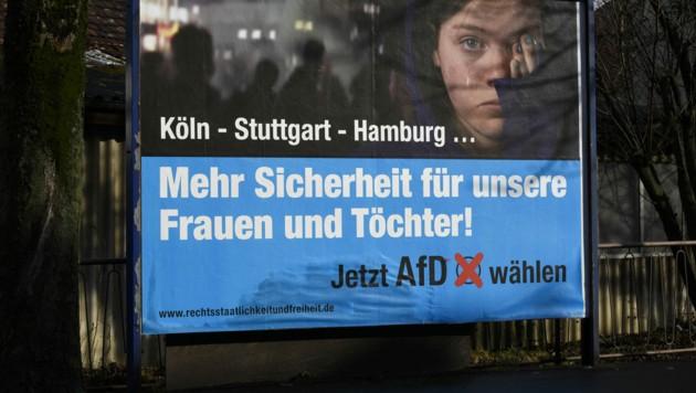 Ein Wahlplakat der Alternative für Deutschland (AfD) im Jahr 2016 (Bild: APA/dpa/Daniel Maurer)