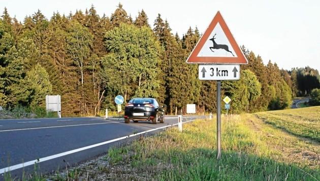4277 Tiere sind heuer auf Kärntens Straßen verendet. (Bild: OÖ. Landesjagdverband)