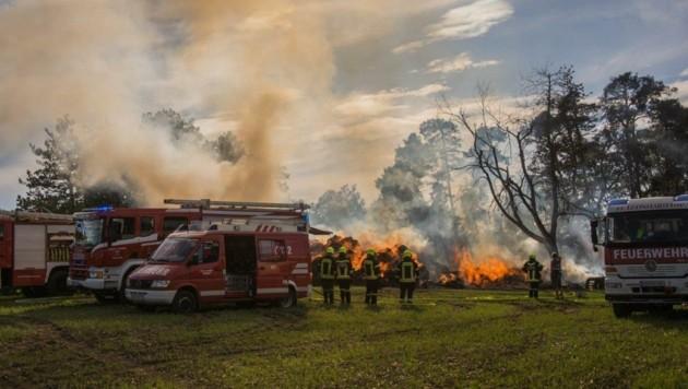 Mehrere Waldviertler Feuerwehren standen im Einsatz. (Bild: Einsatzdoku.at/Führer)