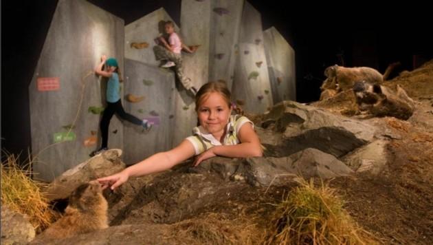 Klettern, die Bergwelt zum Angreifen: Das Nationalpark-Zentrum ist ein Besuchermagnet. (Bild: Nationalparkzentrum/ Reifmüller)