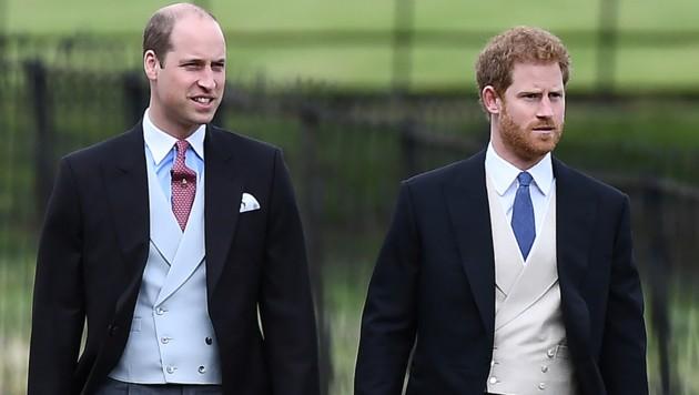 Die Prinzen William und Harry (Bild: AFP)