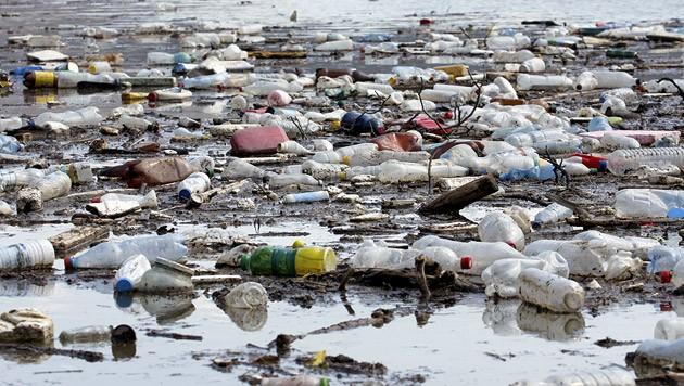 Plastikmüll, der aus dem Meer gespült worden ist (Bild: thinkstockphotos.de)