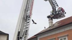 (Bild: APA/Feuerwehr Eisenstadt)