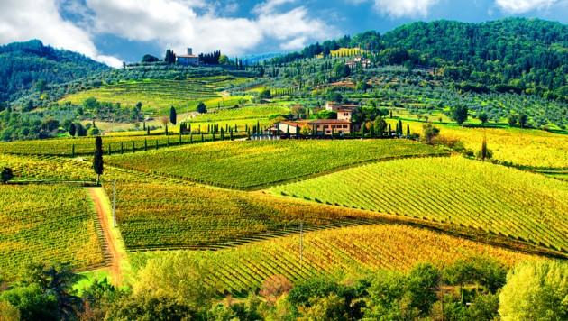 Region Chianti (Bild: thinkstockphotos.de)