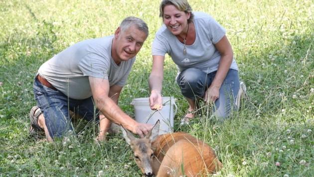 Helmut und Claudia Hirschmann widmen ihre Freizeit den Tieren. (Bild: Sepp Pail)