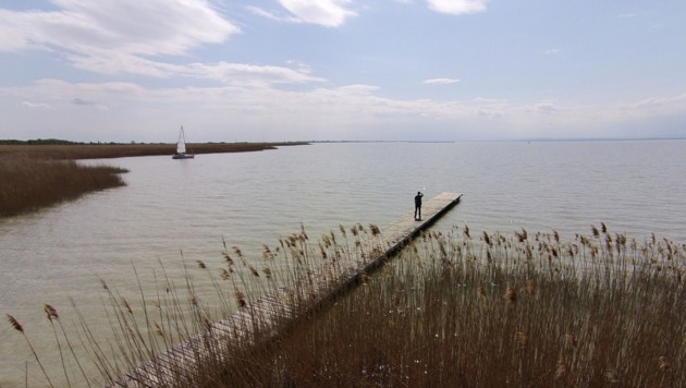 Der Neusiedler See (Bild: APA/Helmut Fohringer)