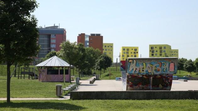 Der Skaterpark in Wien-Liesing (Bild: Peter Tomschi)