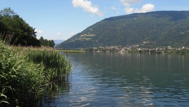 Der Ossiacher See (Bild: krone.at-Leserreporter Michael Gatt)