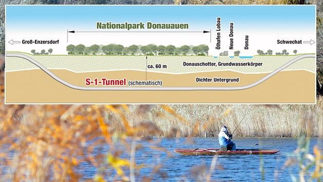 Der Lobautunnel soll unter dem Nationalpark verlaufen. Das Projekt soll 2025 fertig sein.