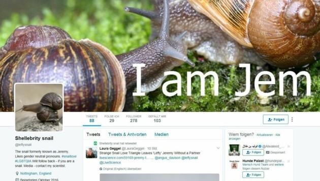 """Für """"Jeremy"""" wurde online nach eine/r Partner/in gesucht. (Bild: Screenshot twitter.com/Shellebrity snail)"""