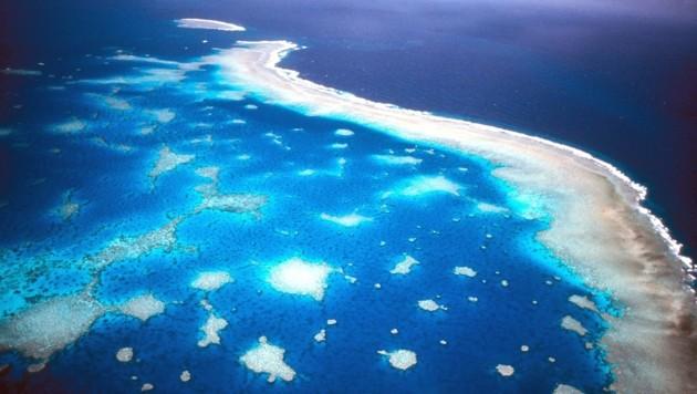 Das Great Barrier Reef vor Australien aus der Luft fotografiert (Bild: Great Barrier Reef Marine Park)