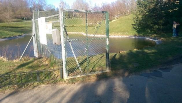 Aus diesem Teich hinter dem Kurzentrum Oberlaa wurden die Kinder gerettet.