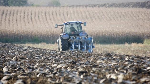 Die lange Trockenheit und der Starkregen machen unseren Bauern zu schaffen. (Bild: Jürgen Radspieler)